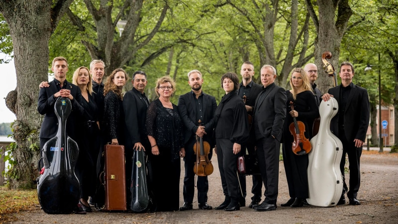 Kammerorchester Musica Vitae (© Foto: AlexanderMahmoud)